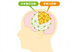 英語を学習するなら日本語を活用せよ!